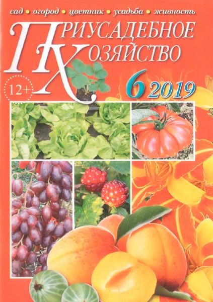 Приусадебное хозяйство №6 за июнь, 2019 года