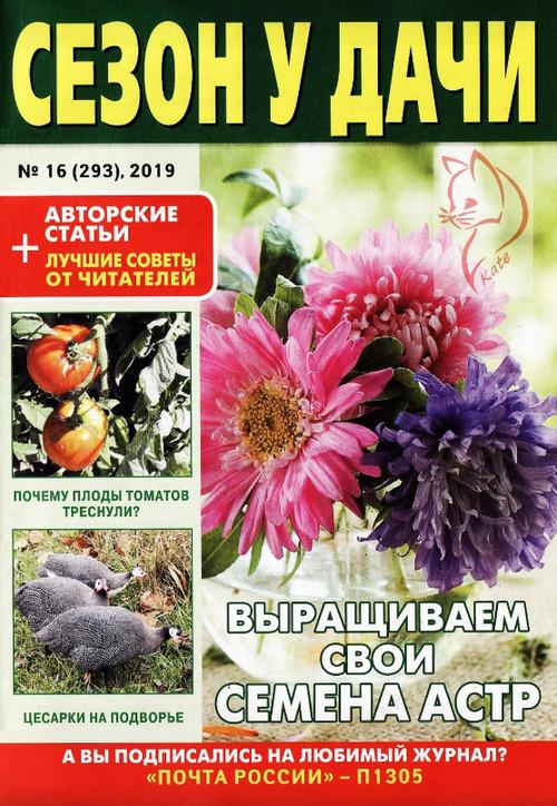 Сезон у дачи №16 / 2019
