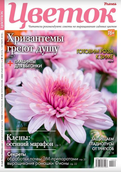 Цветок №19 / 2019
