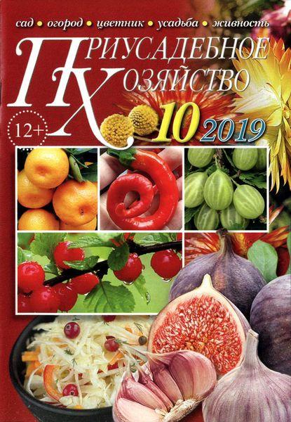 Приусадебное хозяйство №10 за октябрь / 2019