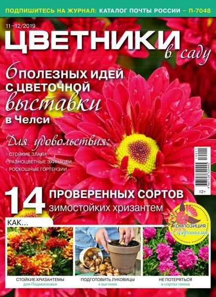 Цветники в саду №11 за ноябрь / 2019