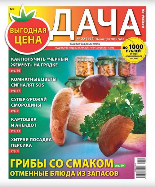 Дача №22 (ноябрь/2019)