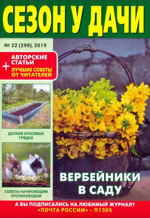 Сезон у дачи №22 (ноябрь/2019)