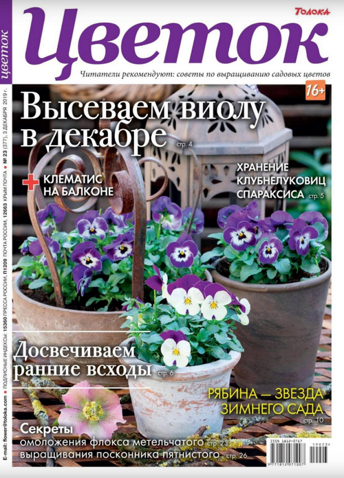 Цветок №23 (декабрь/2019)