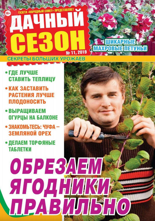 Дачный сезон №11 (ноябрь/2019)