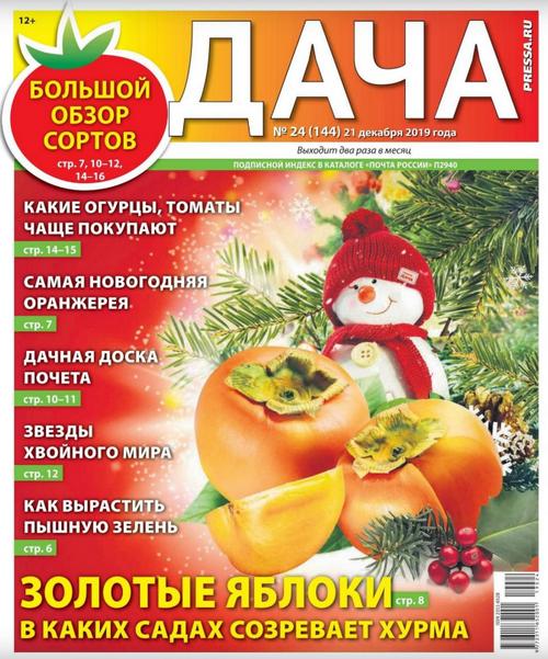 Дача №24 (декабрь/2019)