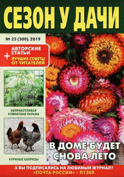 Сезон у дачи №23, декабрь 2019