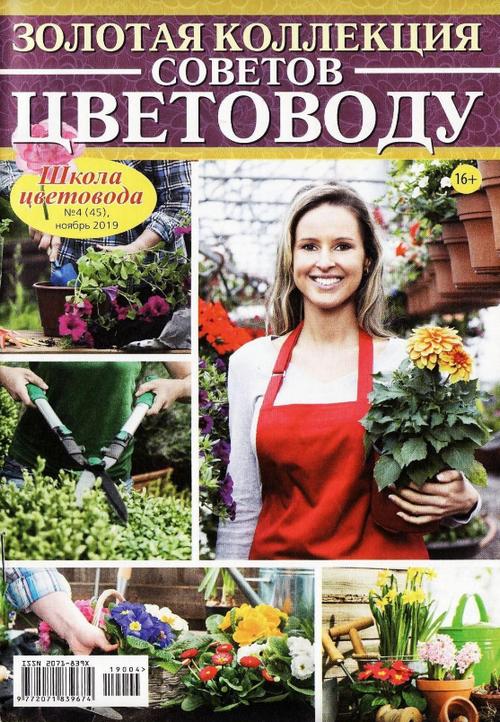 Школа цветовода №4, ноябрь 2019