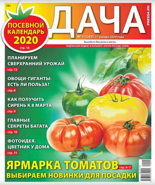 Дача №1 (январь/2020)