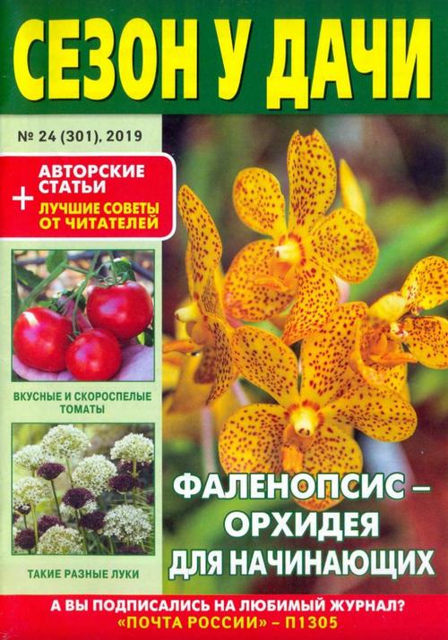 Сезон у дачи №24 (декабрь/2019)