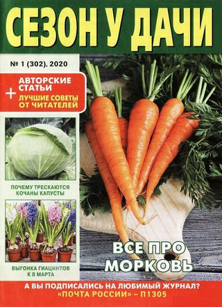 Сезон у дачи №1 (январь/2020)