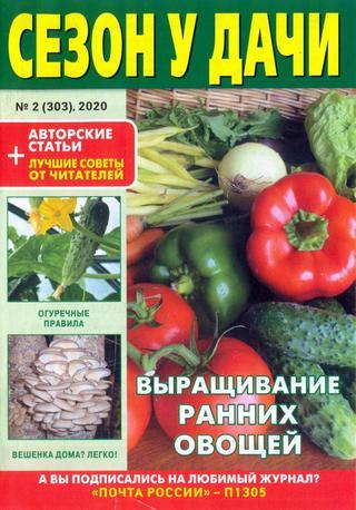 Сезон у дачи №2 (январь/2020)