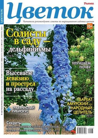 Цветок №3 (февраль/2020)