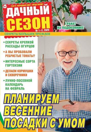 Дачный сезон №1-2 (январь-февраль/2020)