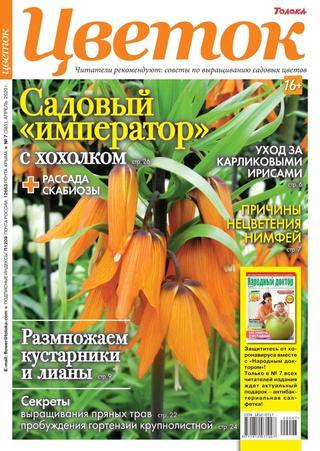 Цветок №7 (апрель/2020)