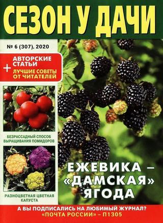 Сезон у дачи №6 (март/2020)