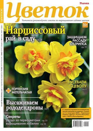 Цветок №6 (март/2020)
