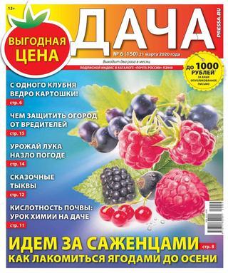 Дача №6 (март/2020)