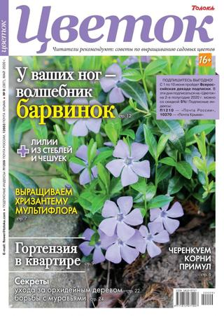 Цветок №9 (май/2020)