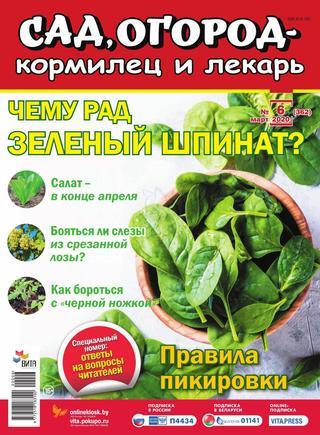 Сад огород кормилец и лекарь №6 (июнь/2020)