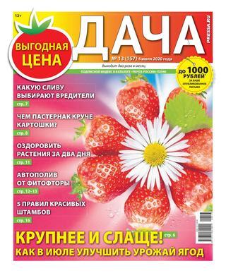 Дача №13 (июль/2020)