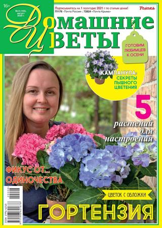 Домашние цветы №8 (август/2020)