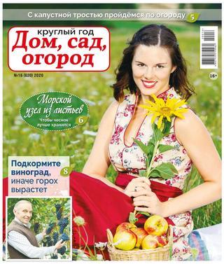 Круглый год Дом сад огород №16 (август/2020)