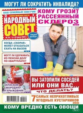 Народный совет №29 (июль/2020)