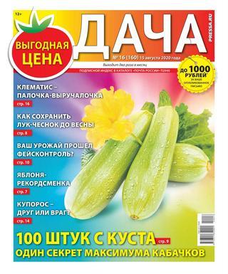 Дача №16 (август/2020)