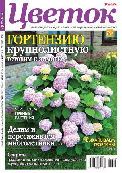 Цветок №17, сентябрь 2021