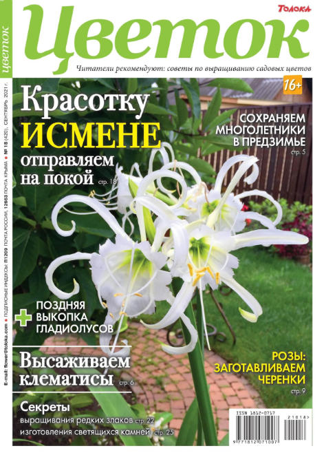 Цветок №18, сентябрь 2021