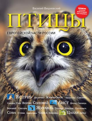 Птицы европейской части России, 2011, Василий Вишневский