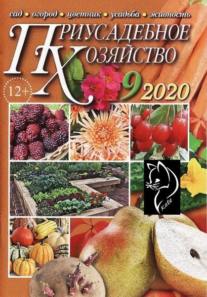 Приусадебное хозяйство №9, сентябрь 2020