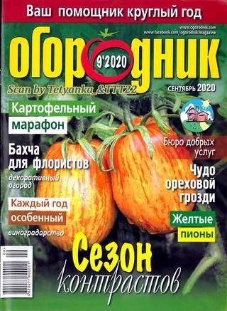 Огородник № 9, сентябрь 2020