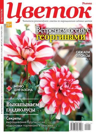 Цветок №17, сентябрь 2020