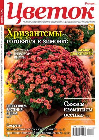 Цветок №18, сентябрь 2020