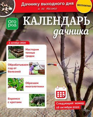 Огород Ру. Календарь дачника №19, октябрь 2020