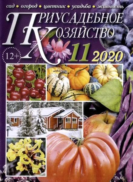 Читать журнал Приусадебное хозяйство №11, ноябрь 2020