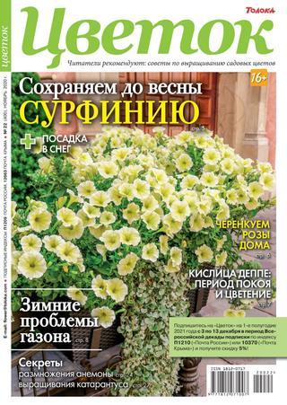 Читать журнал Цветок №22, ноябрь 2020