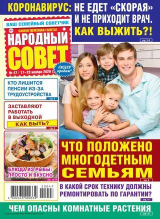 Народный совет №47, ноябрь 2020