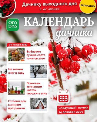 Календарь дачника №23, ноябрь 2020
