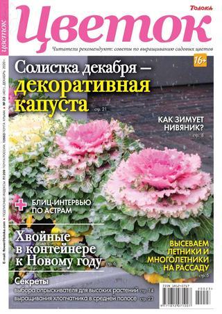 Цветок №23, декабрь 2020