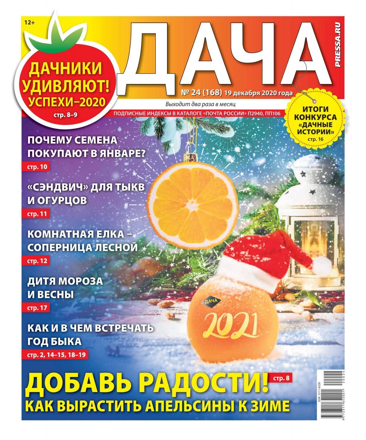 Дача №24, декабрь 2020