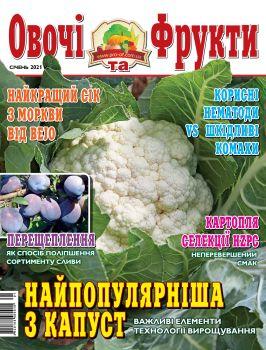 Овощи и фрукты. Украина №1, 2021