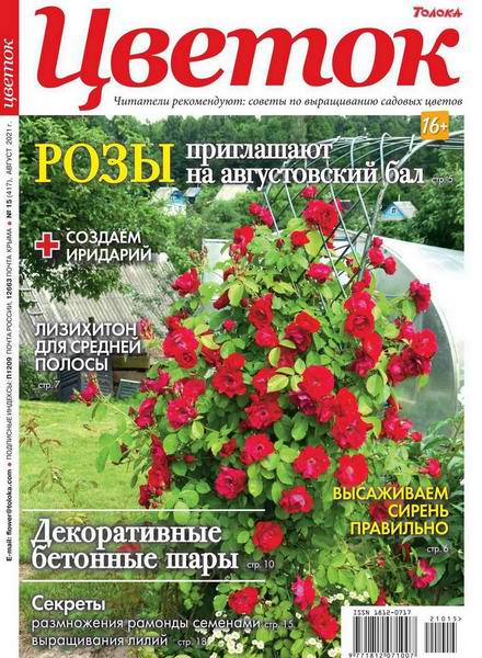 Цветок №15, август 2021