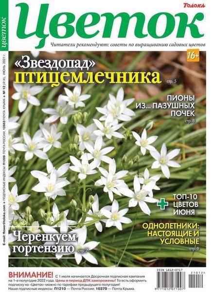 Цветок №12, июнь 2021